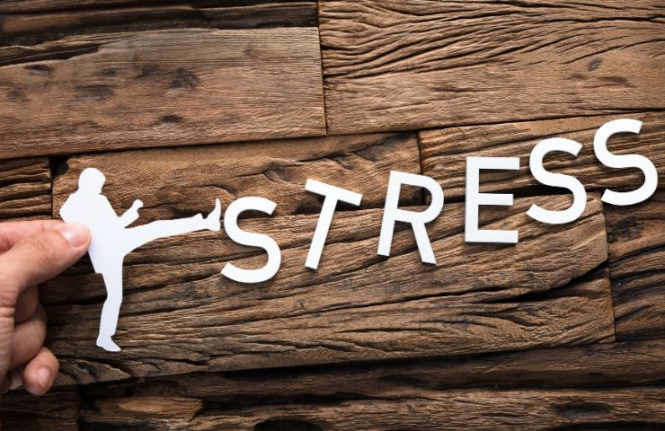 5 Facts about Student Stress and How You Can Fight It - Florida Career College